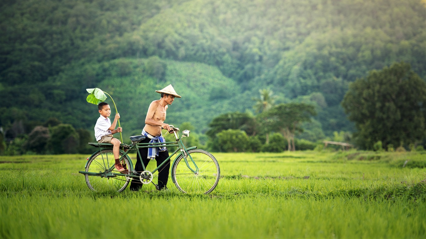 Summer Fathers Day Jungle Field Sunny Bike - 1366x768 wallpaper download