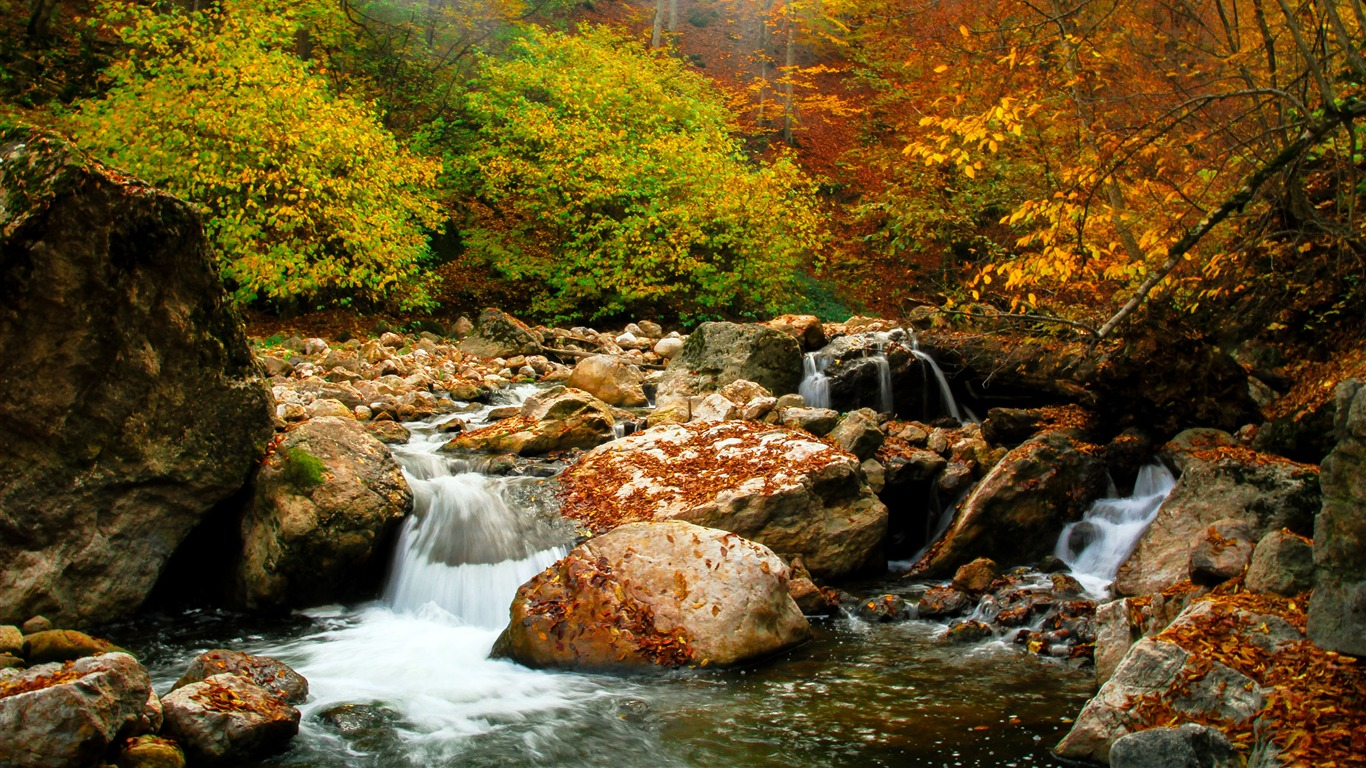 Armenia_Lastiver_Autumn_Forest_River_Stone