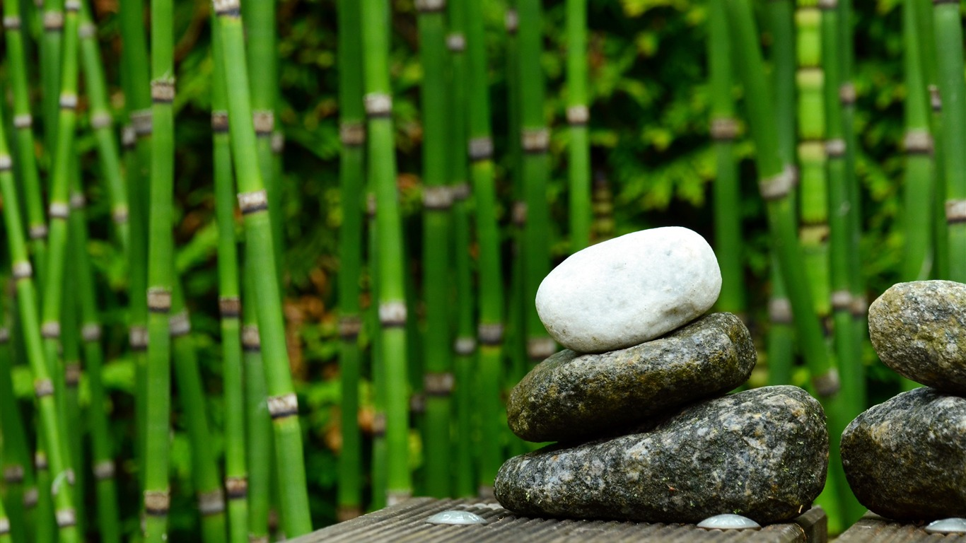 Stone_stacked_green_bamboo_forest_photo2018.11.2
