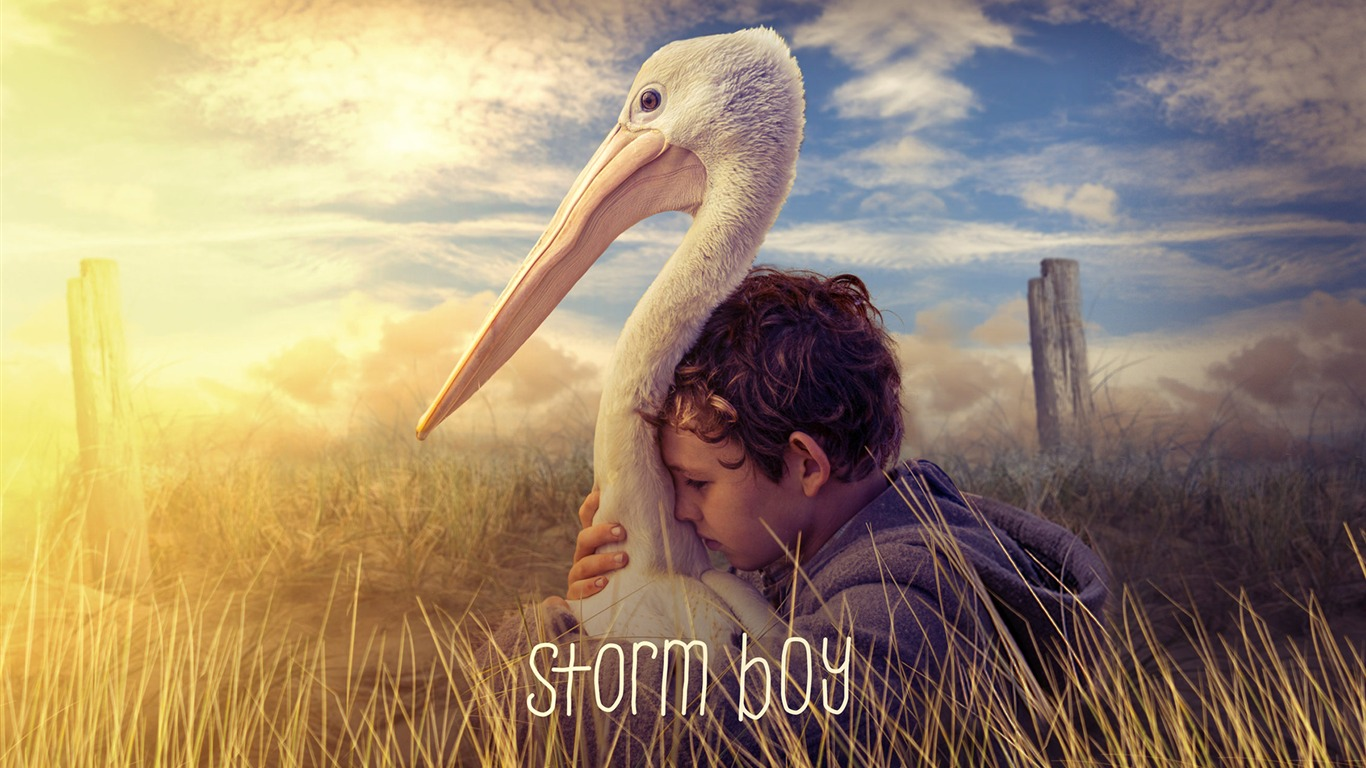 Storm_Boy_2019_HD_Movies_Poster2018.12.27