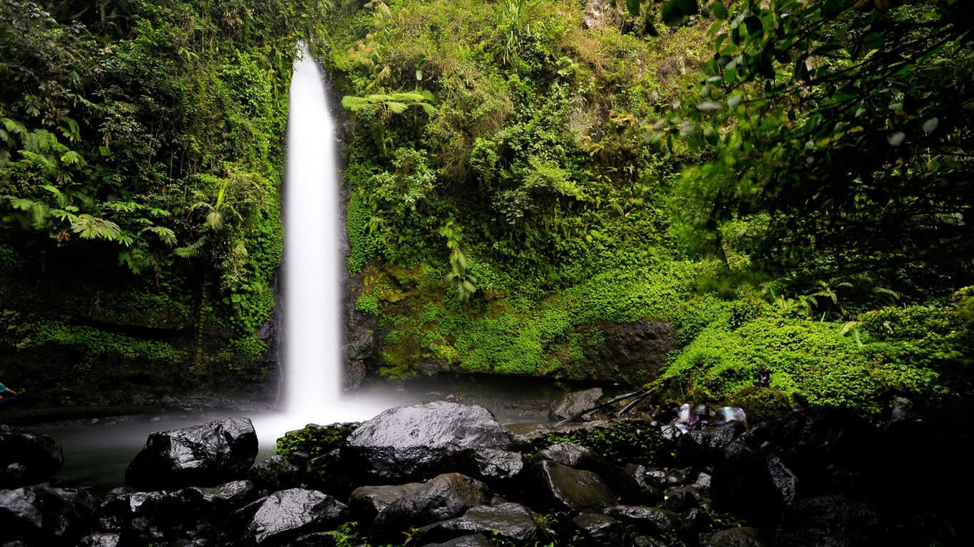 Tropical_Rainforest_Waterfall_2020_Landscape_4K_Photo2020.12.12