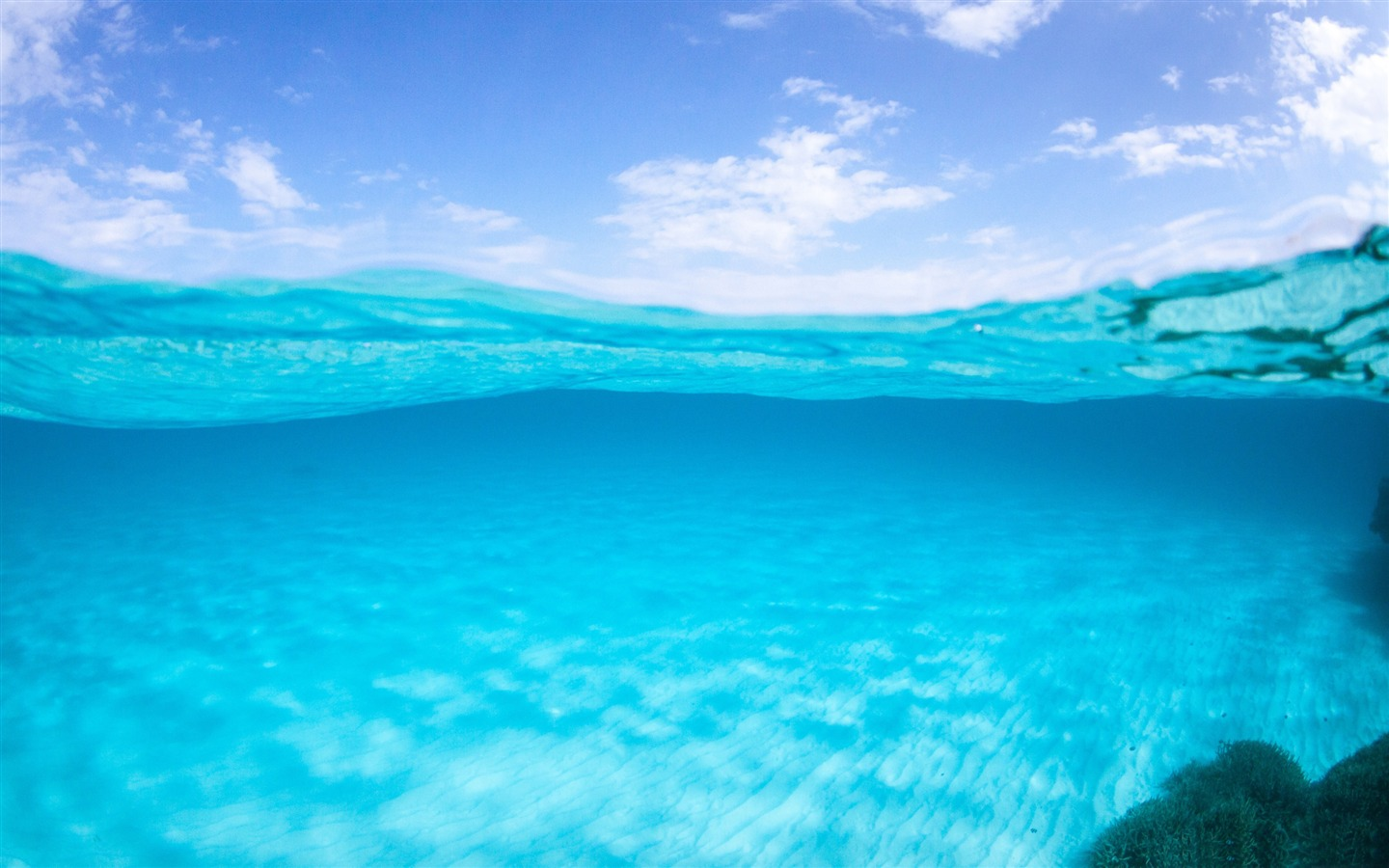 half underwater-ocean scenery hd wallpaper preview | 10wallpaper