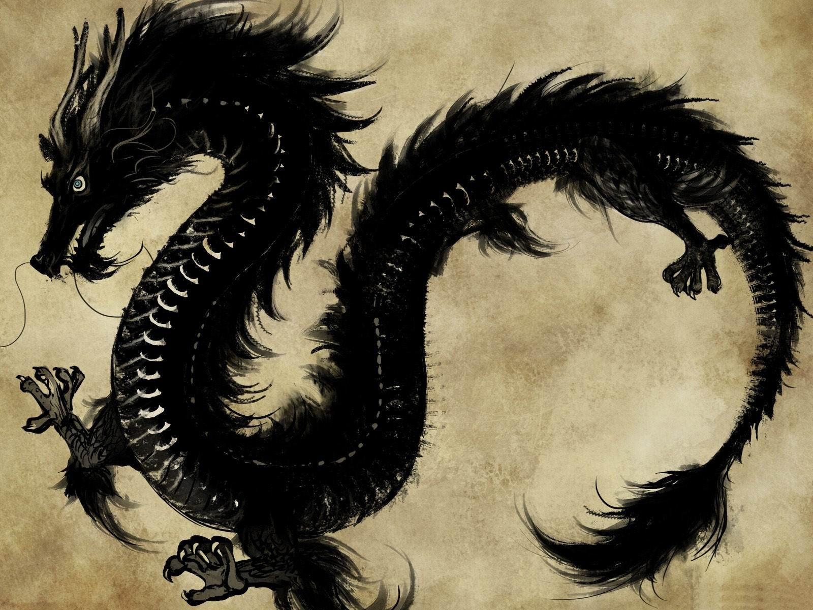 dragon wallpaper widescreen high resolution - photo #41