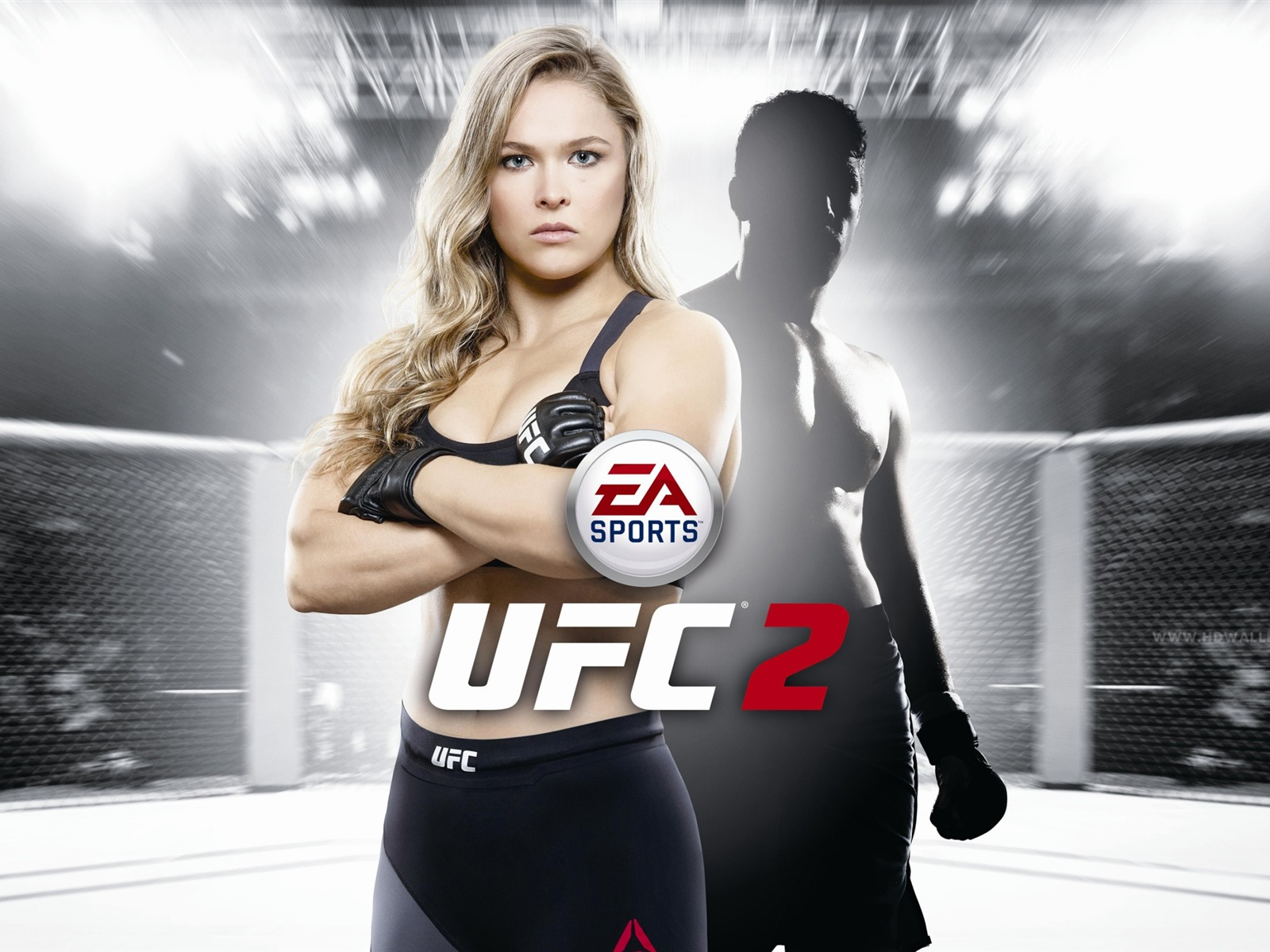 Ea Sports Ufc Pc Game Hd Wallpaper Avance 10wallpapercom