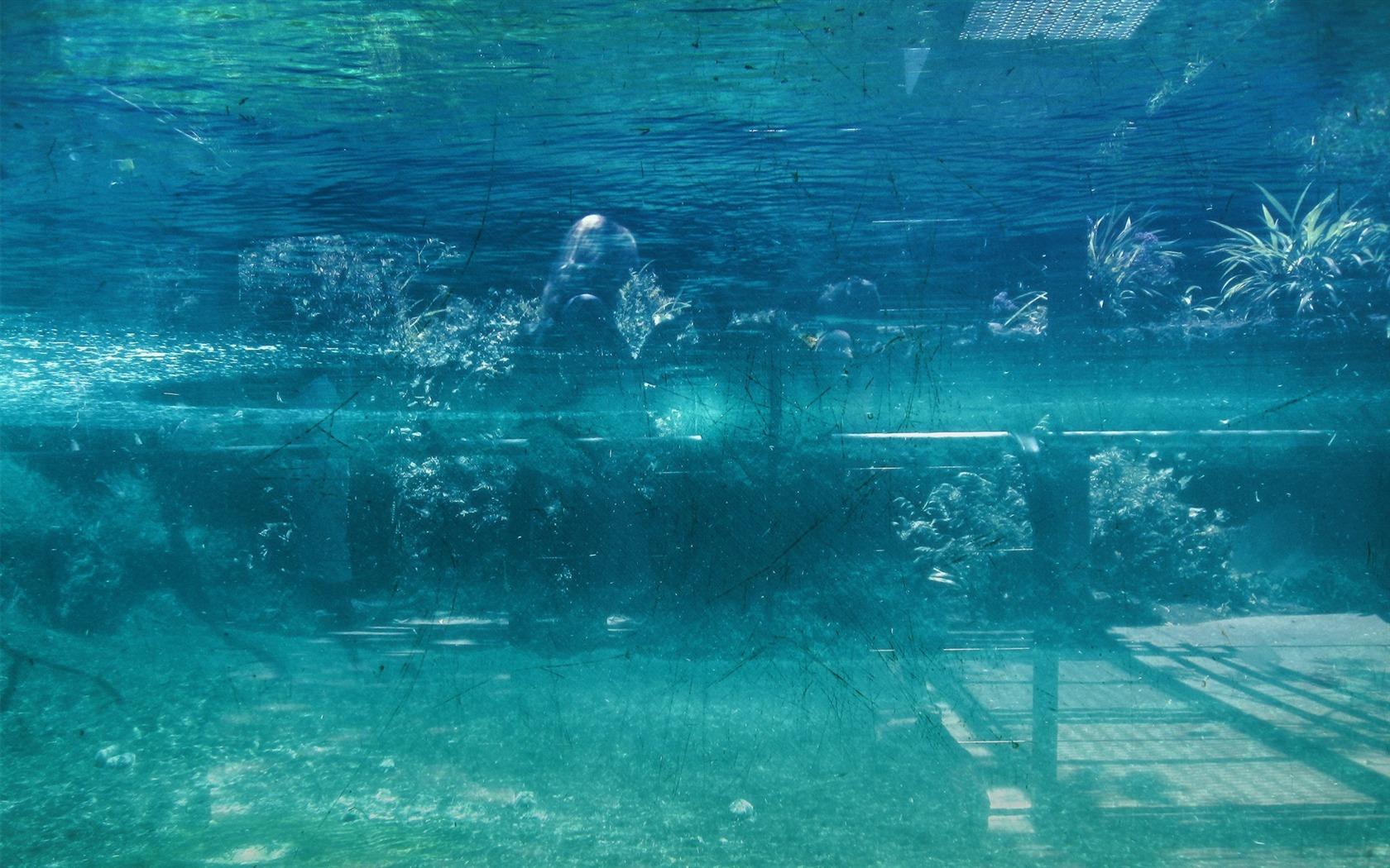 水中 シティlomoの壁紙プレビュー 10wallpaper Com