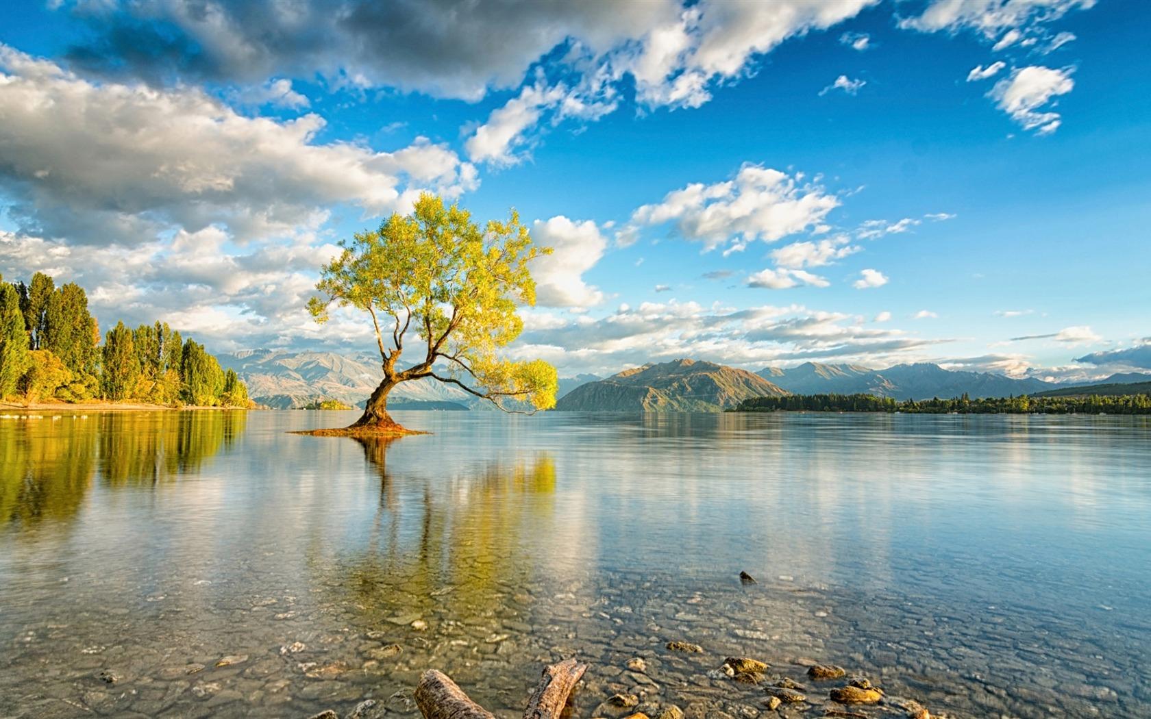 ニュージーランドの島の湖ワナカ-自然のHDの壁紙プレビュー | 10wallpaper.com