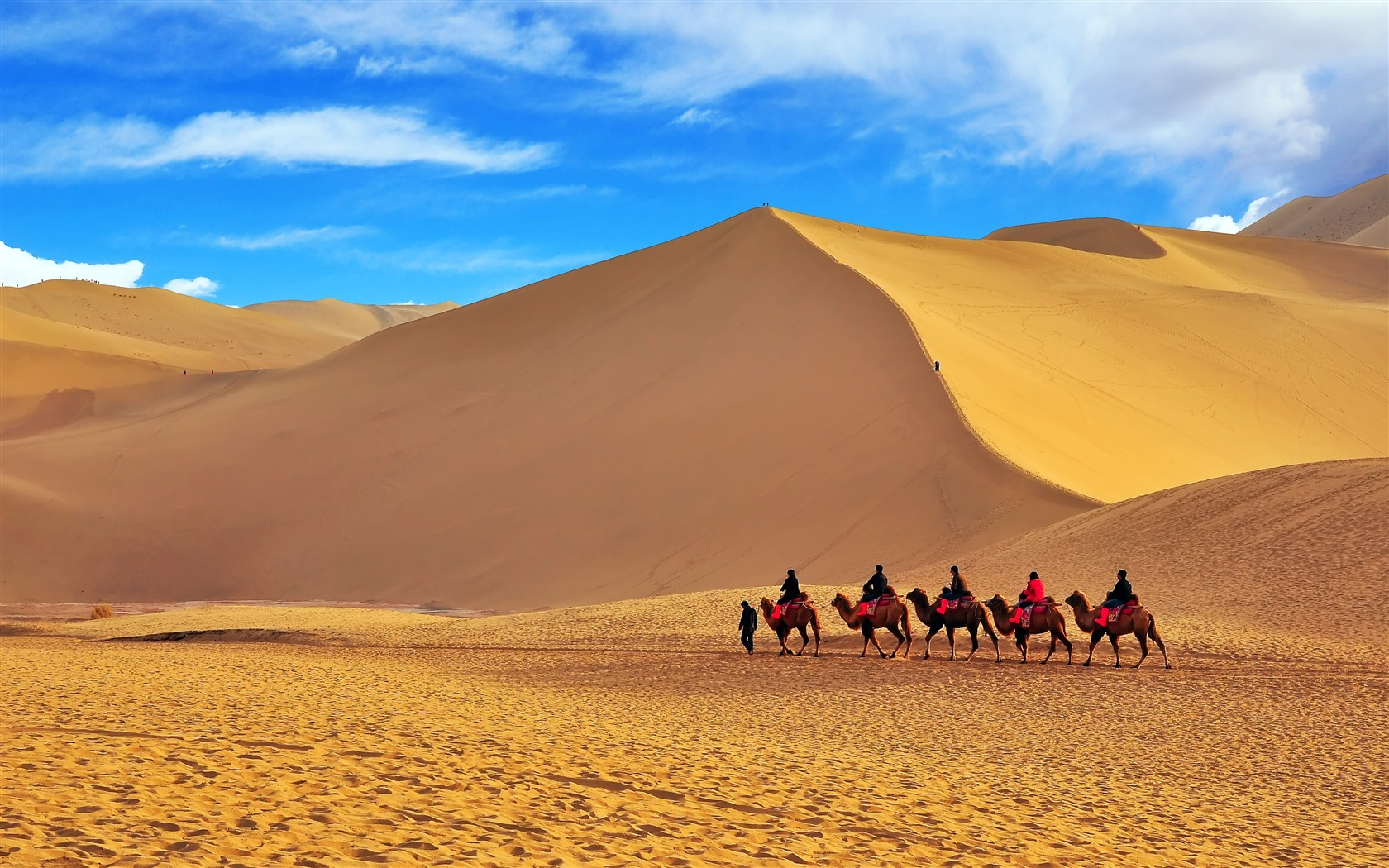 How to use bitcoin on silk road