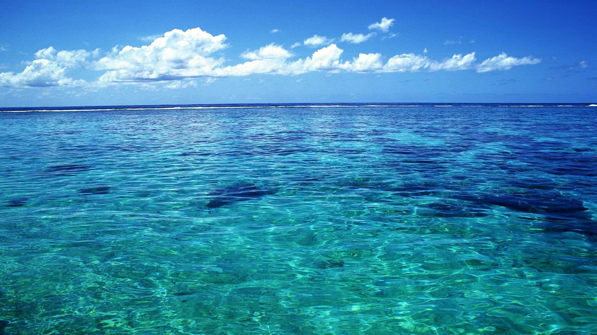 Tahiti Cristalline Fond D Ecran D Eau De Mer Apercu 10wallpaper Com