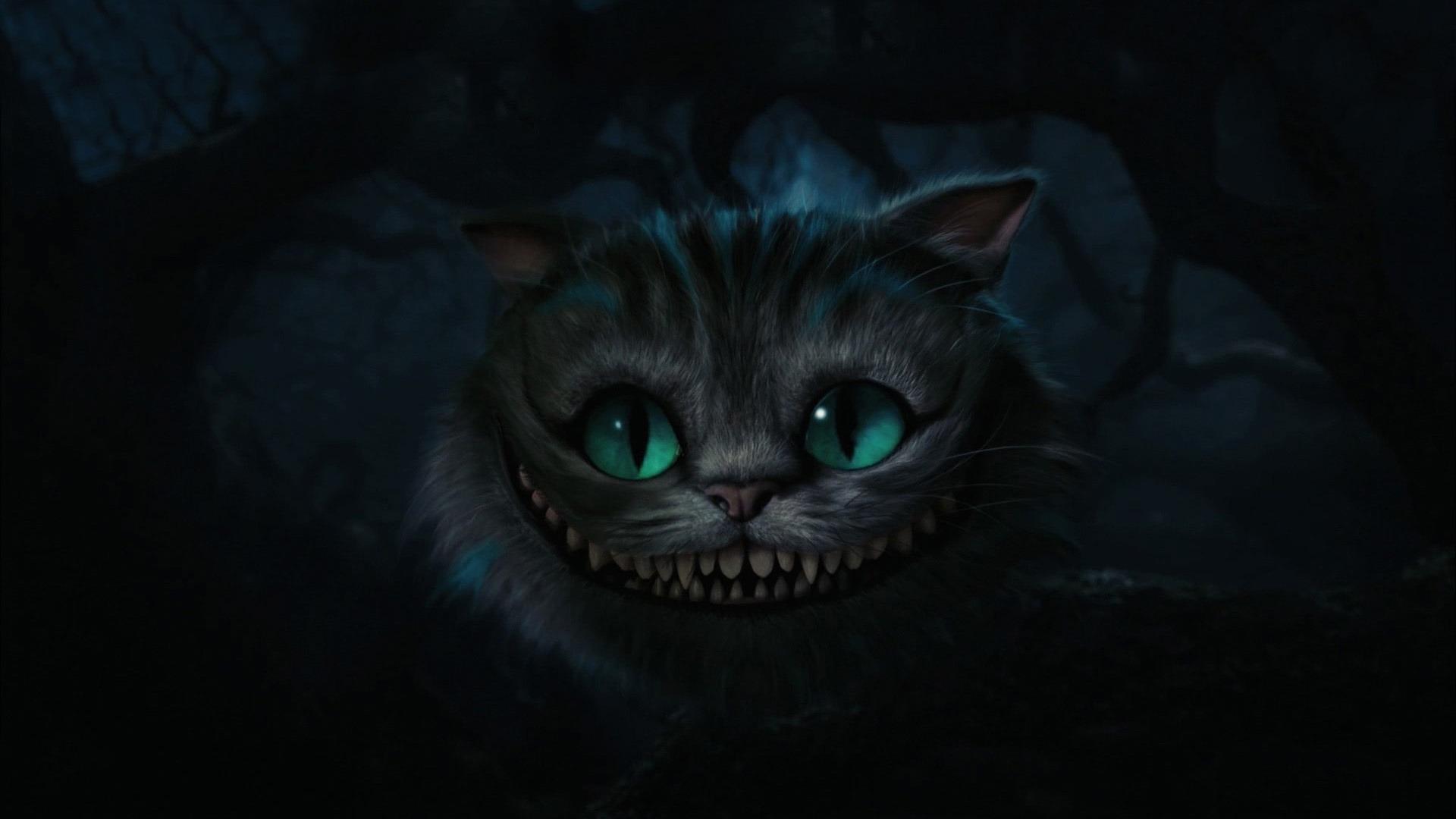 alice in wonderland cat wallpaper Photo