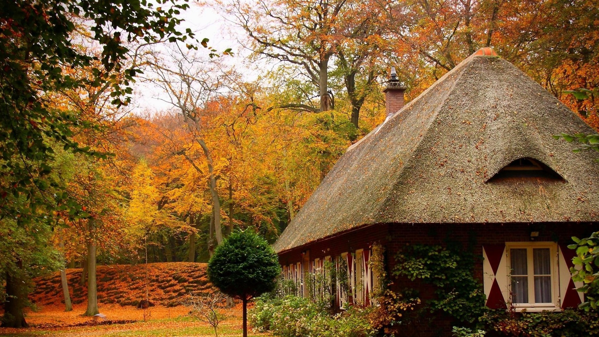 Cosy Home Autumn House Nature Wallpapers Preview