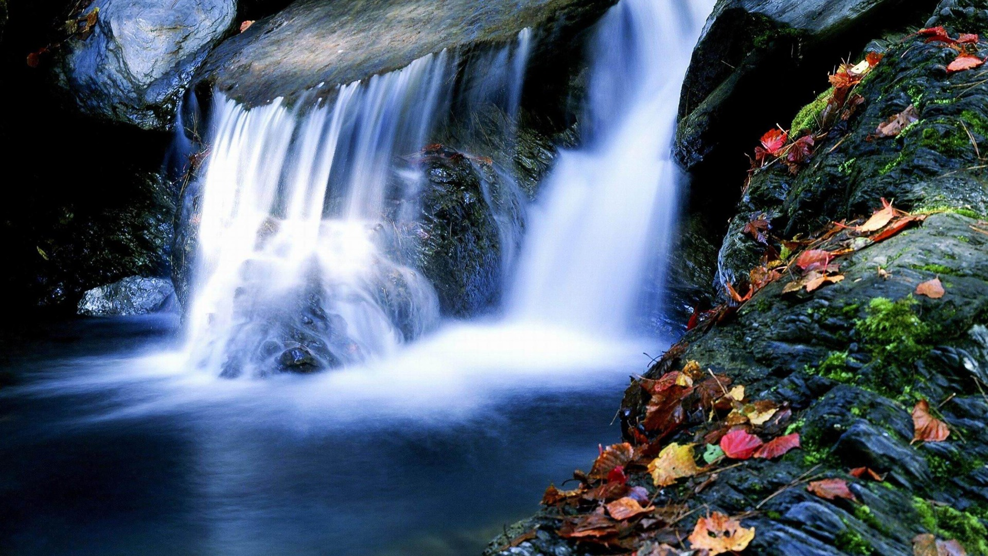 Waterfall Maple-Nature rivers Landscape Wallpaper Preview | 10wallpaper.com