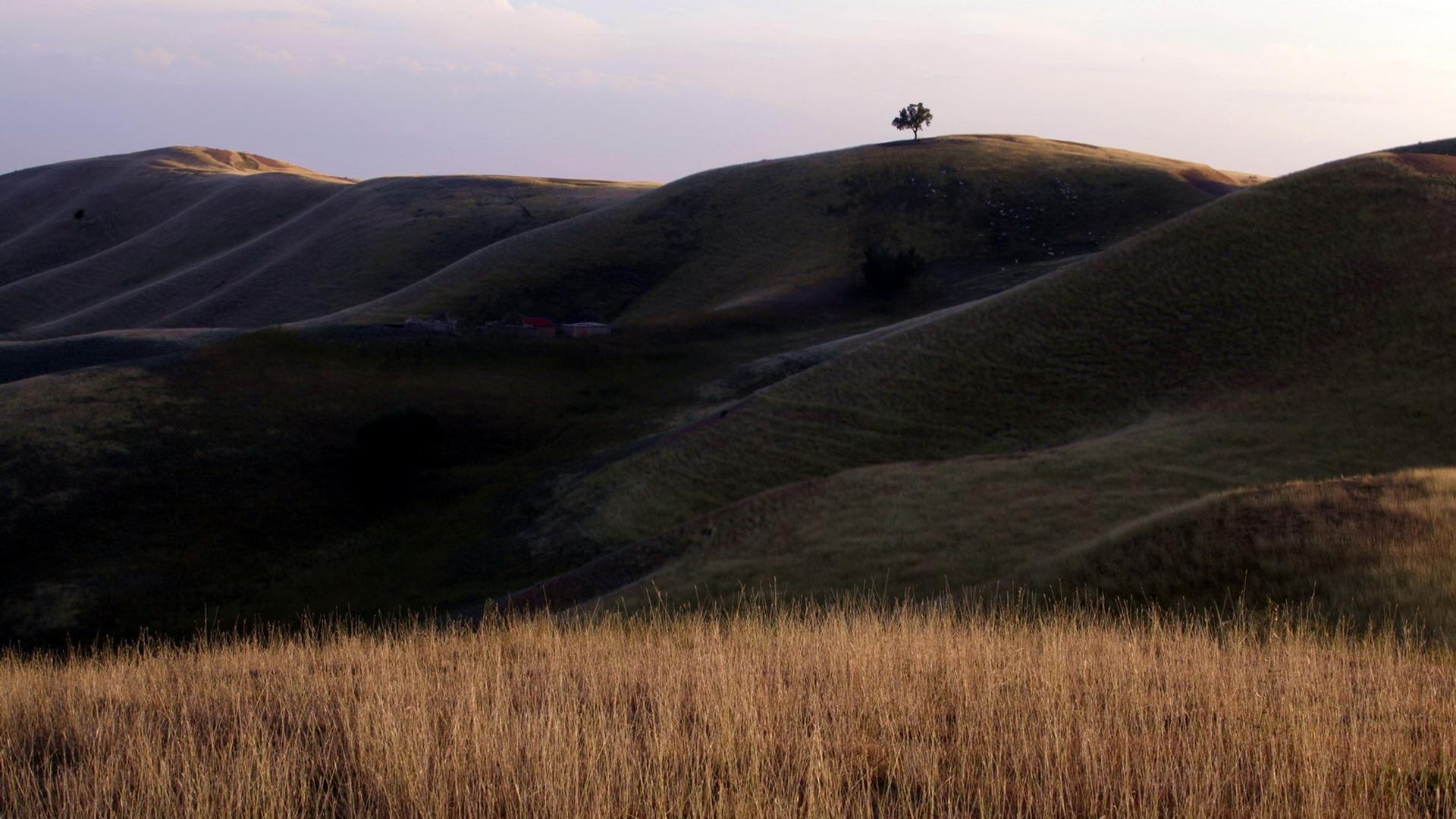 秋の荒野 自然風景デスクトップ壁紙プレビュー 10wallpaper Com