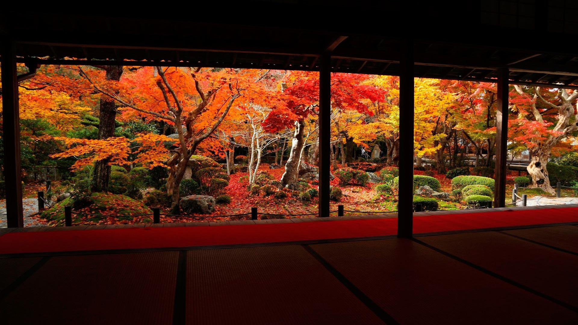 秋の風景のベストな角度 圓光寺秋の壁紙プレビュー 10wallpaper Com