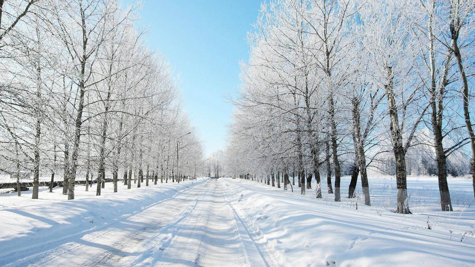 Route enneig e fond d 39 cran paysages d 39 hiver 1920x1080 for Fond ecran hiver hd