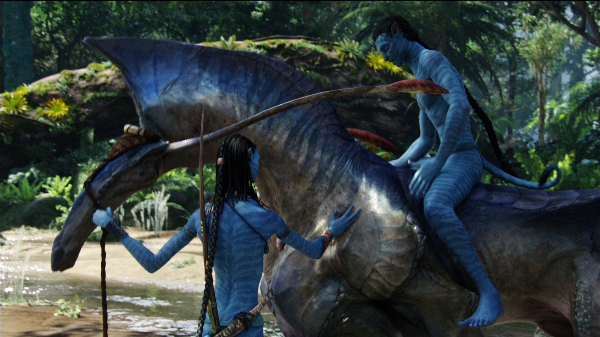 2014 Avatar 2 Movie HD Desktop Wallpaper 09 Preview ...