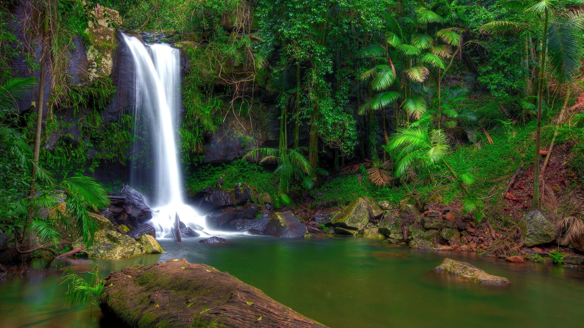 Rainforest Waterfall Scenery Hd Wallpapers Avance