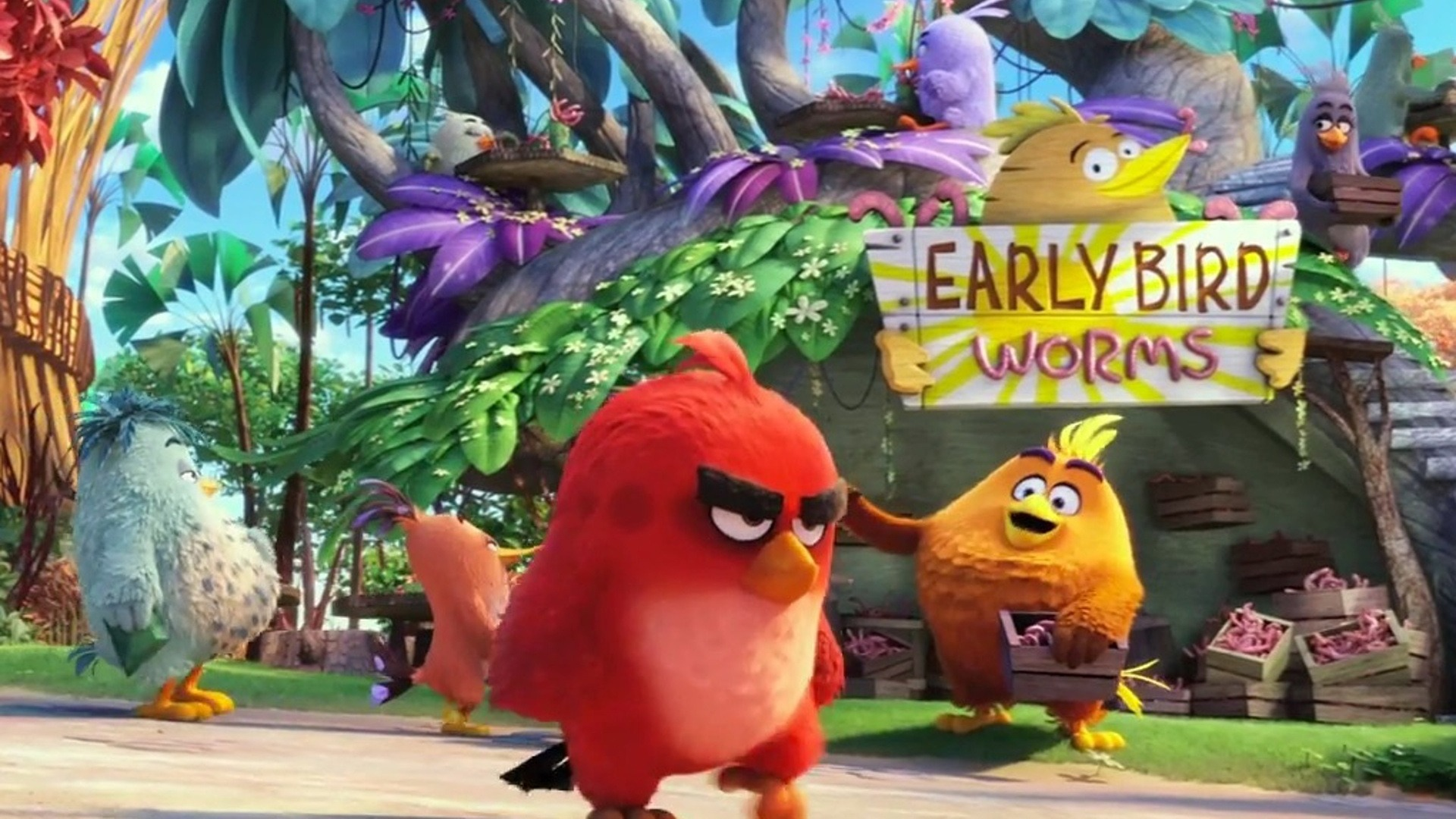 The Angry Birds Movie 2016 Hd Wallpaper 02 Preview 10wallpaper Com