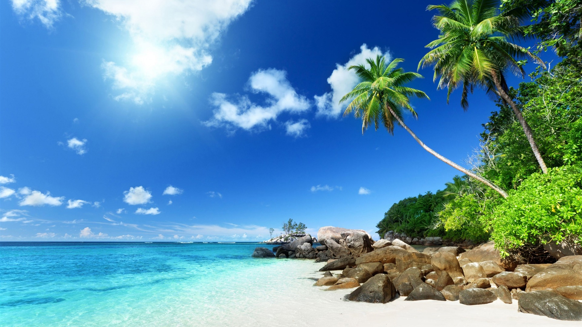 Palm arbres plage paradisiaque paysage d 39 t hd fond d for Fond ecran ete hd