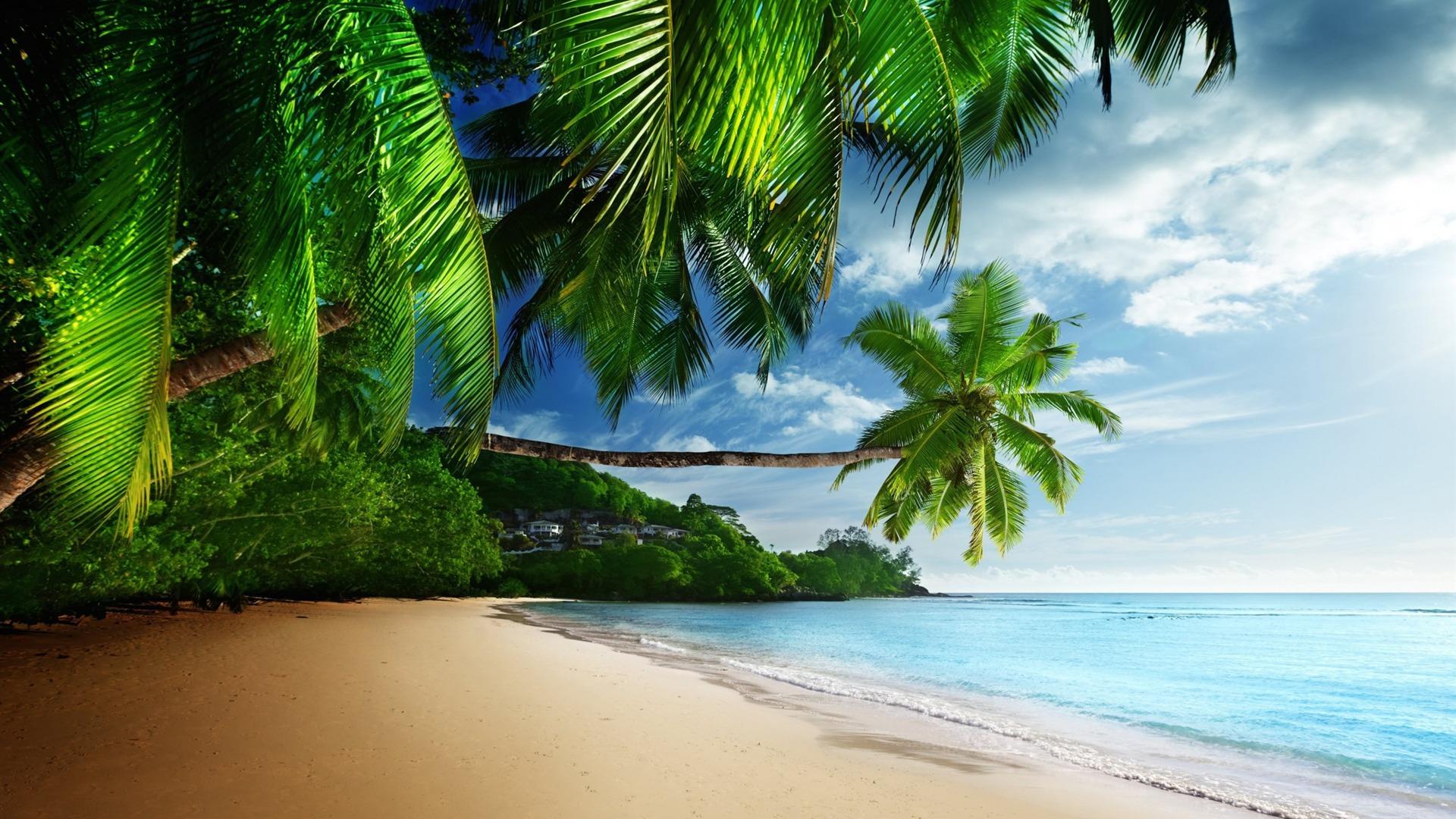 Tropical Plage Paradisiaque 2016 Haute Qualit 233 Fond D