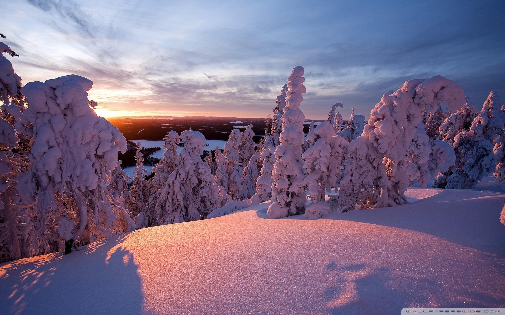冬のラップランド フィンランド デスクトップの壁紙の冬景色 綺麗な