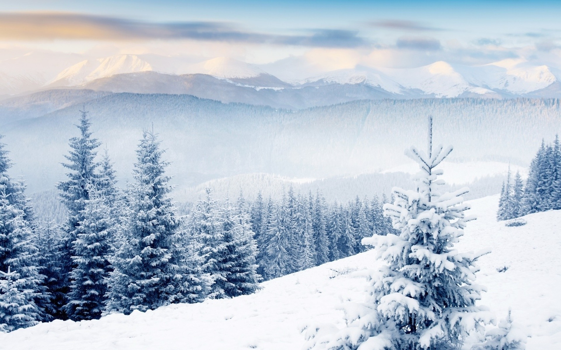 Winter First Snow Landscape Hd Wallpaper 03 Preview 10wallpaper Com
