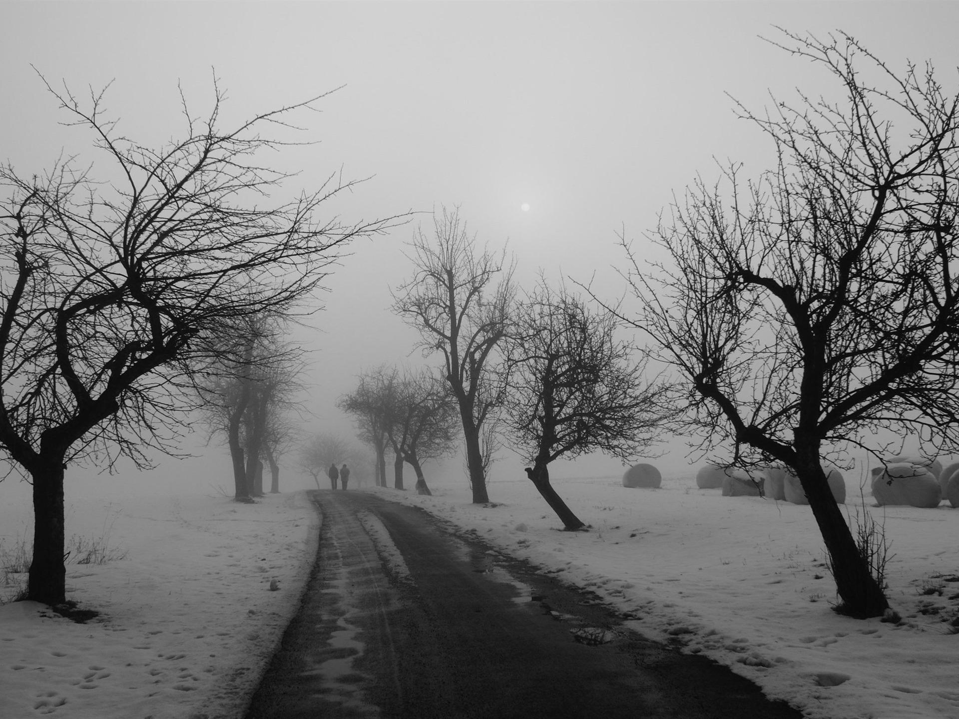 route d'hiver en noir et blanc-Winter neige fond d'écran ...