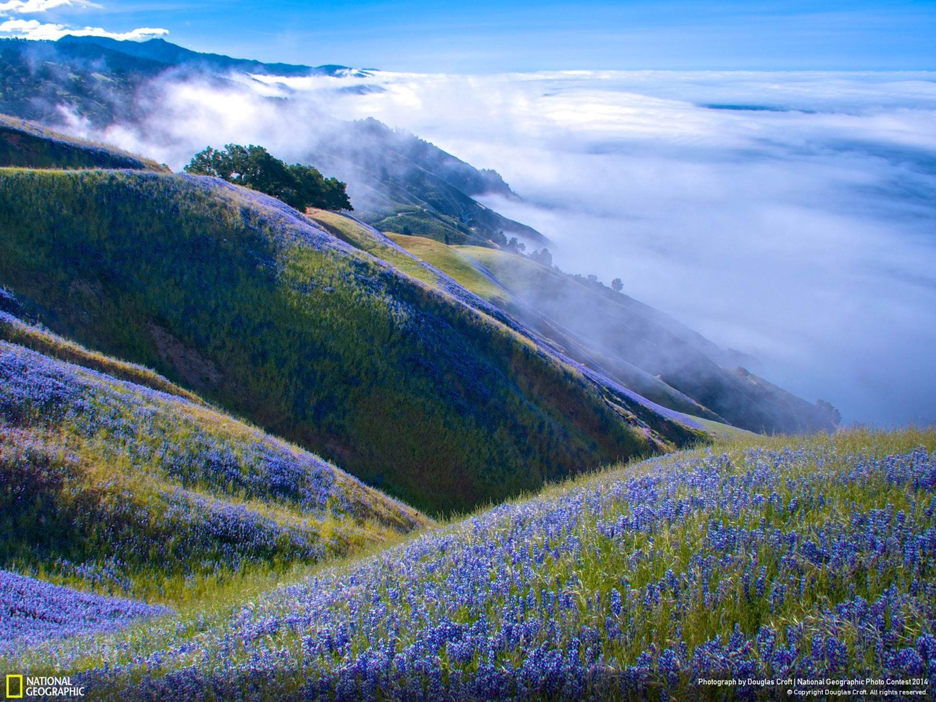 Sobre Big Sur National Geographic Wallpaper Avance
