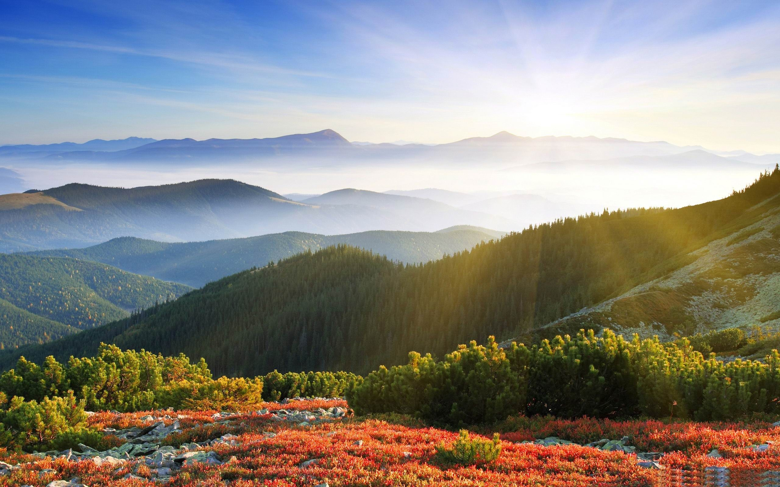Morning Sunshine With Fog-Beautiful Mountain Scenery
