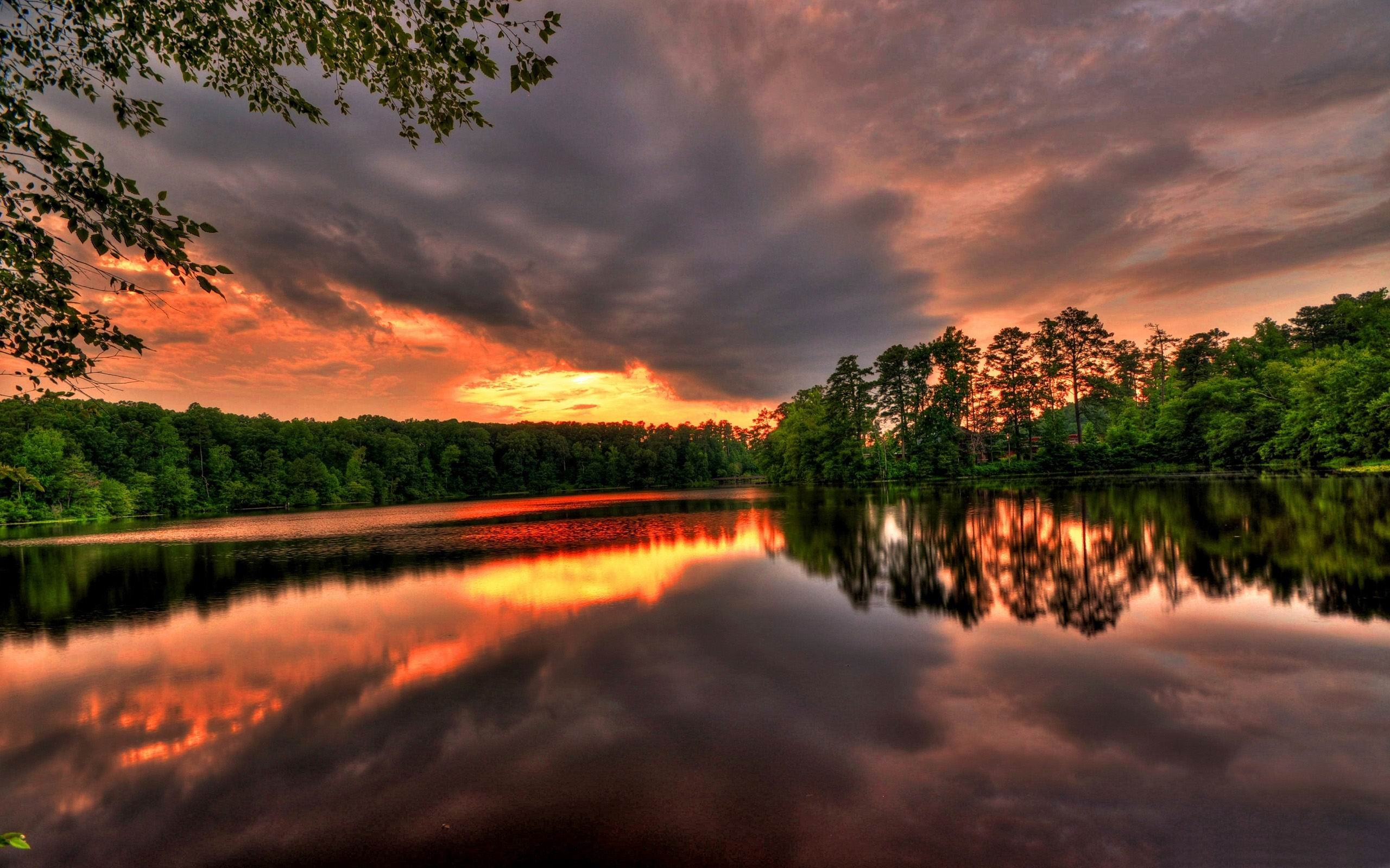 sunset river forest-Beautiful river landscape photography ...