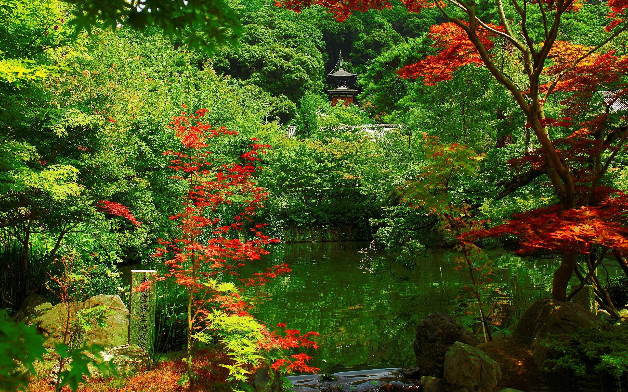 京都ガーデン-日本の風景壁紙 / 2560x1600