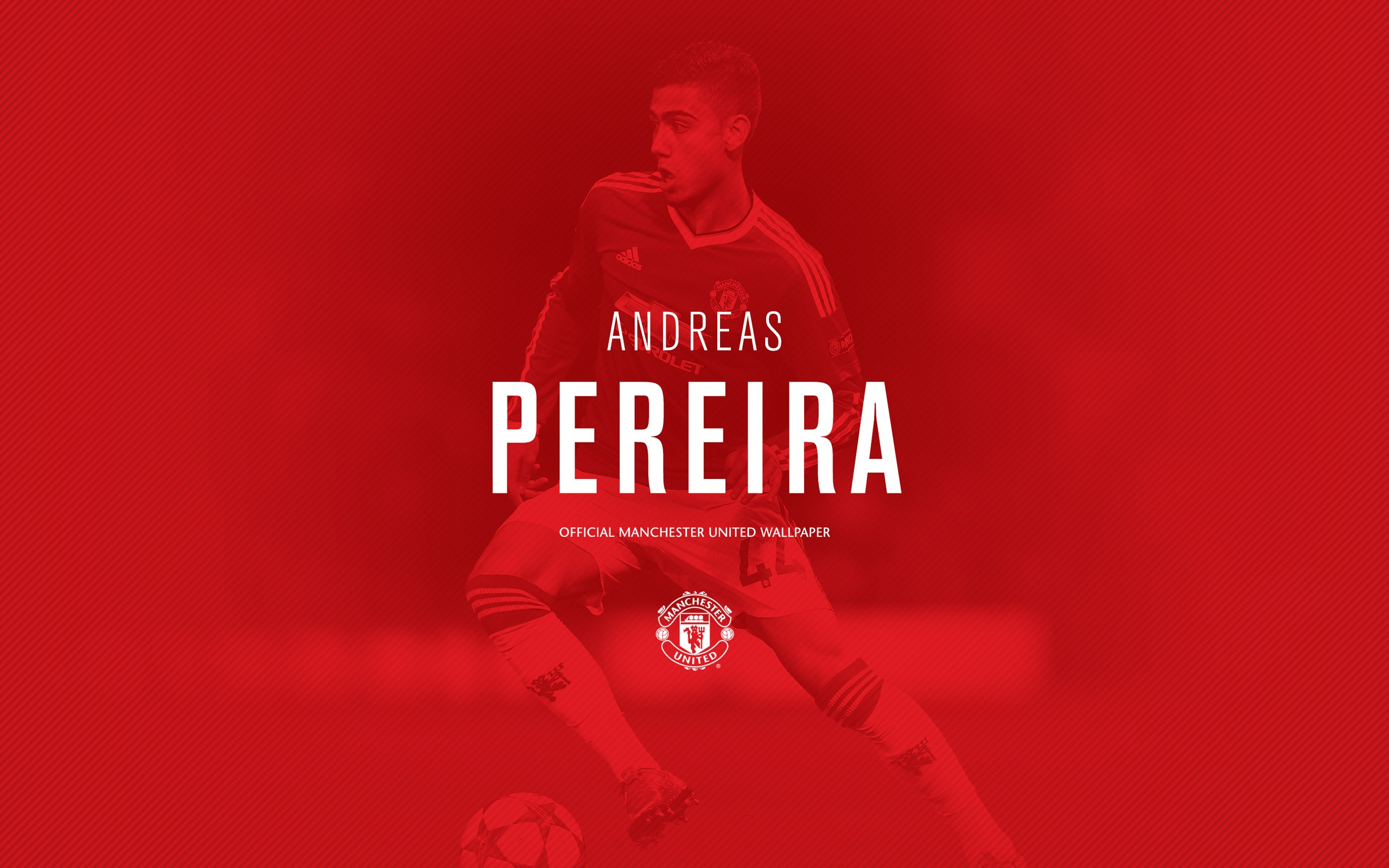 Andreas Pereira 2016 Manchester United Hd Wallpaper Preview