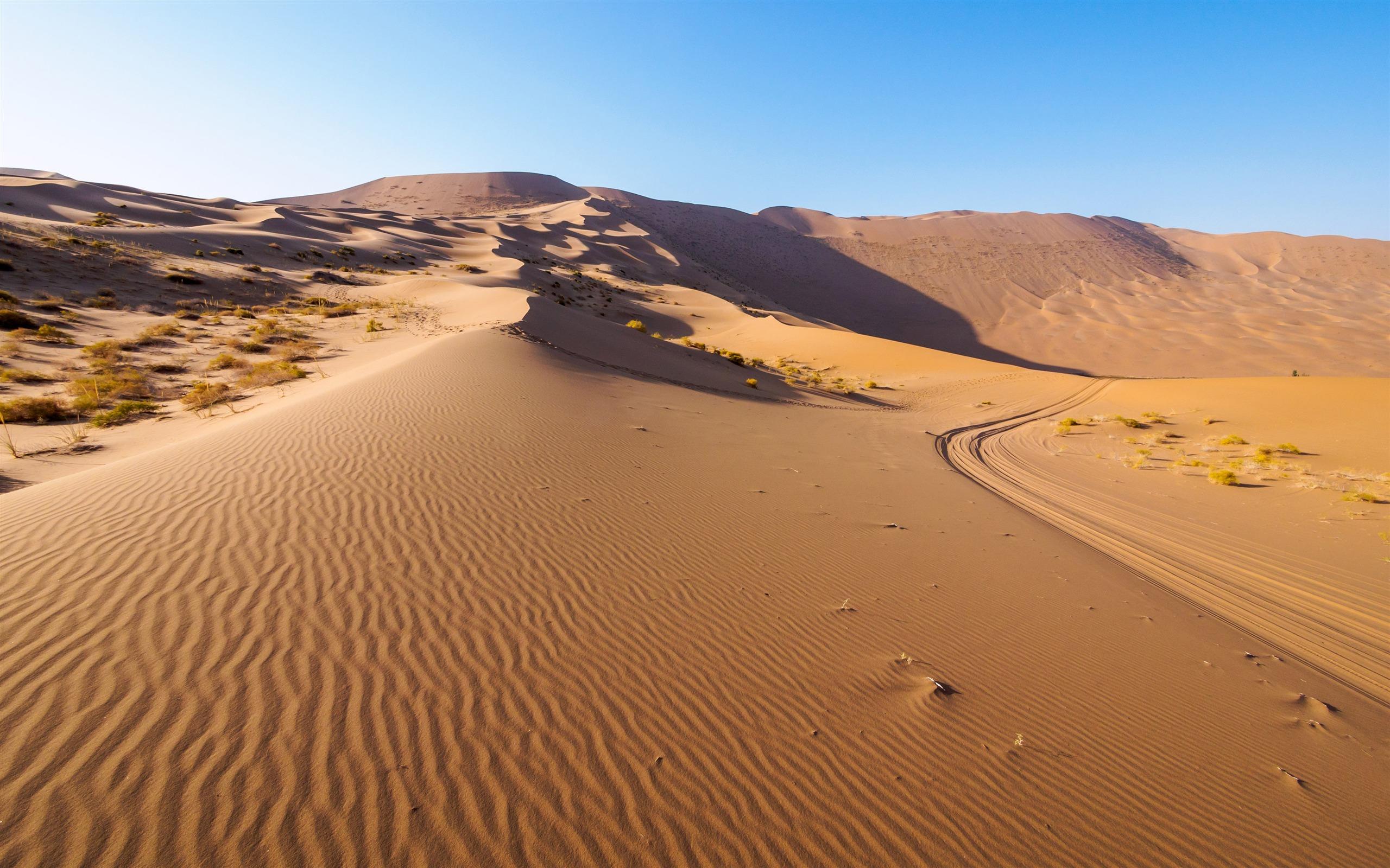 怡怡_西部,中国,干旱的沙漠,蓝天,风景预览 | 10wallpaper.com
