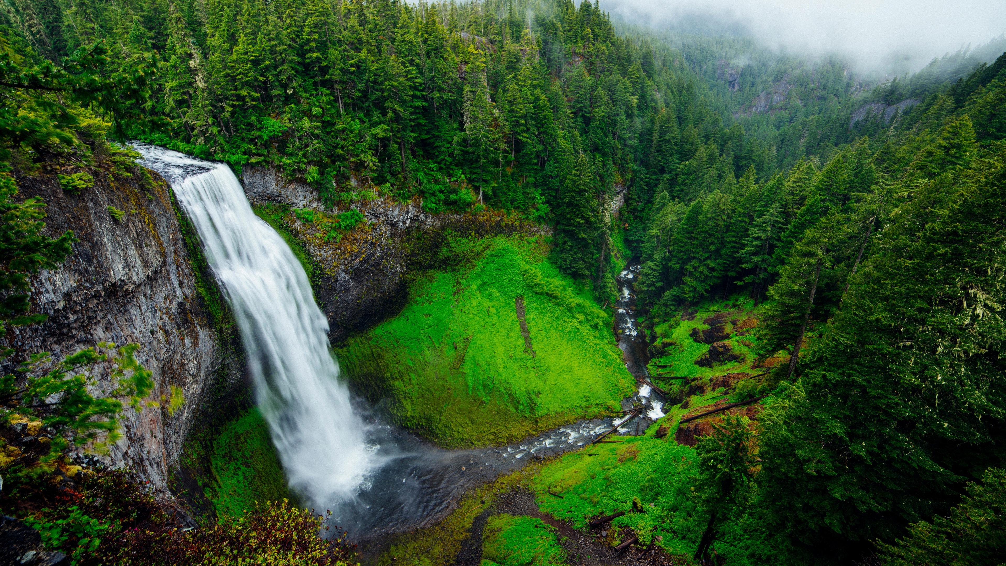 热带,原始森林,瀑布,河流预览 10wallpaper Com