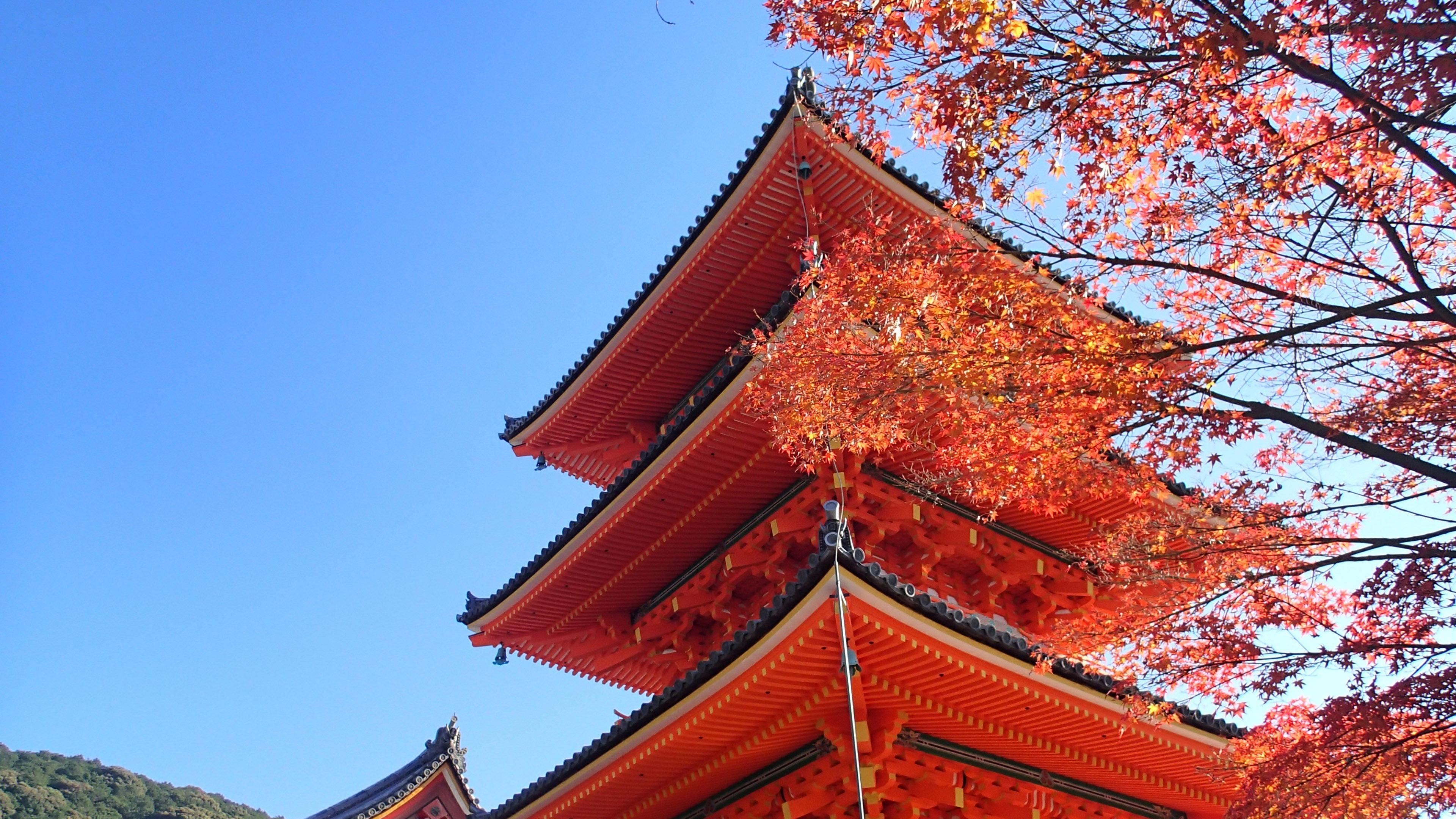 德国人_日本,京都,浅草寺,蓝天,风景预览   10wallpaper.com