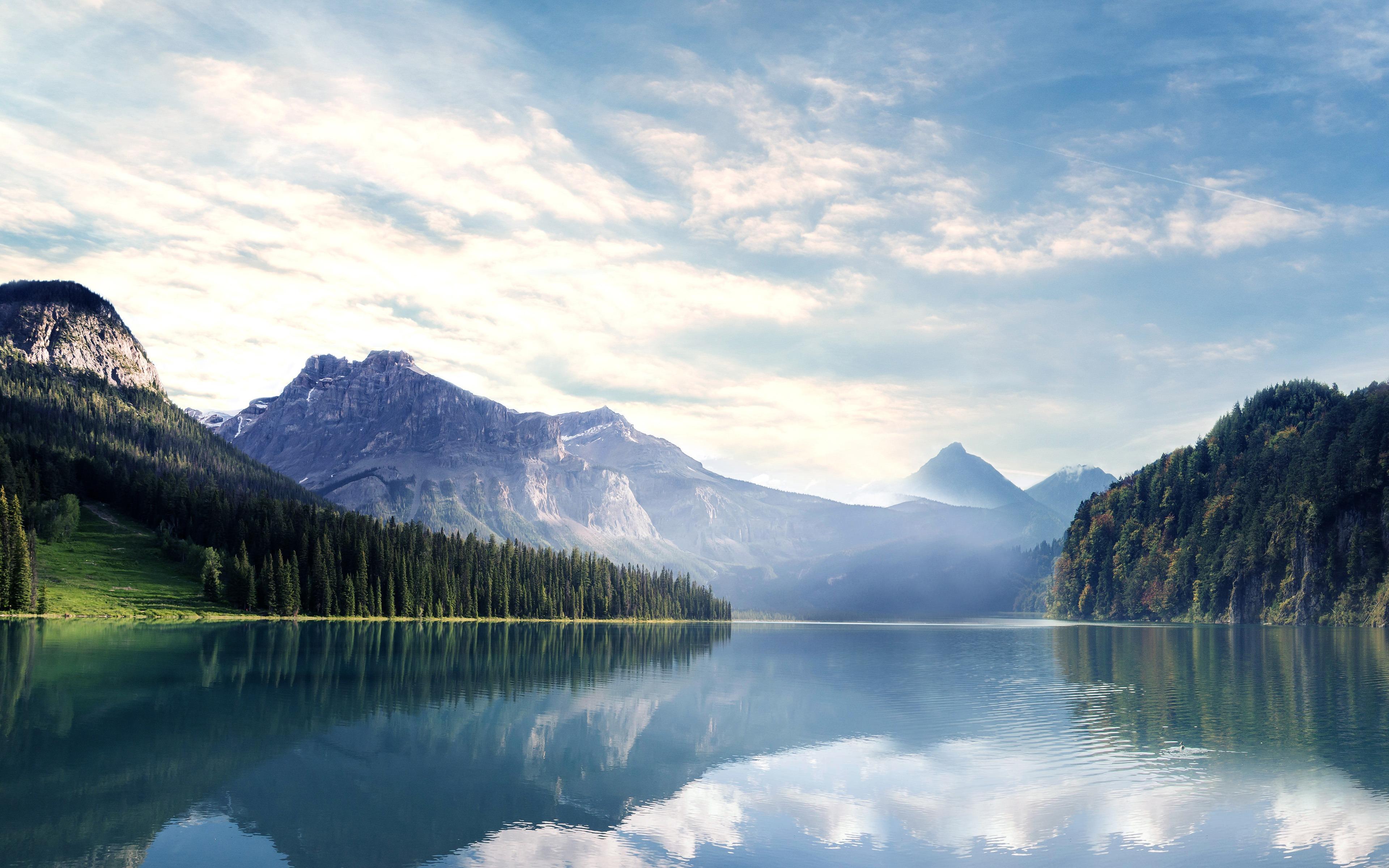 国家,森林,公园,湖,雾,风景预览 10wallpaper Com