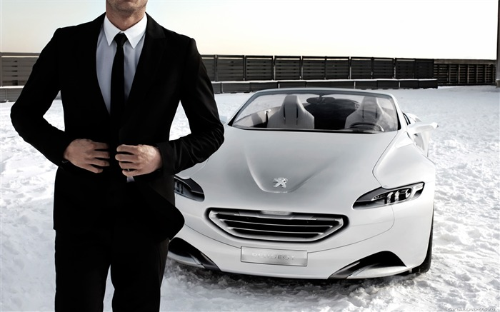 Concept Car Peugeot SR1 - 2010 07 Views:6103