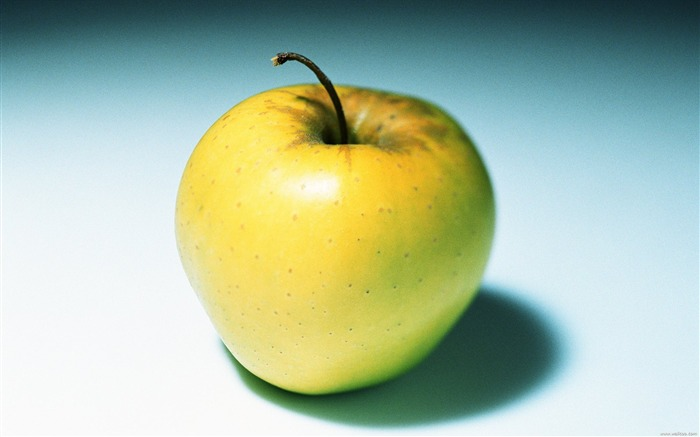 Fruit Photography Golden Delicious apple wallpaper Views:13997 Date:6/22/2011 10:46:29 PM