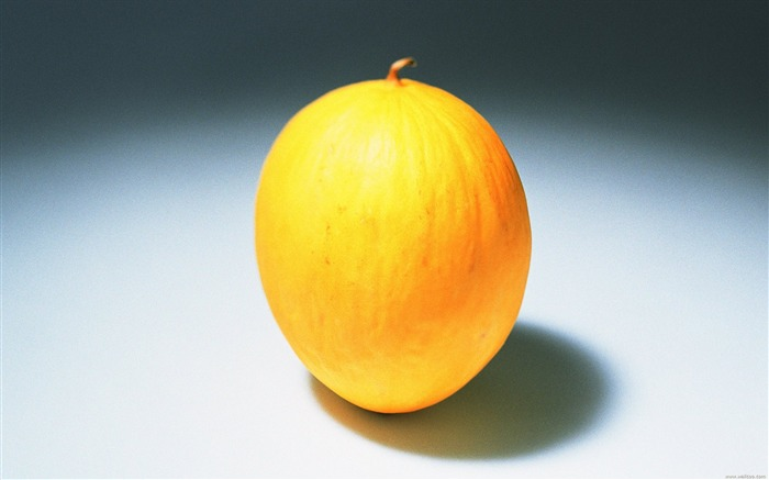 Fruit Photography Golden melon Wallpaper Views:11548 Date:6/22/2011 10:46:53 PM