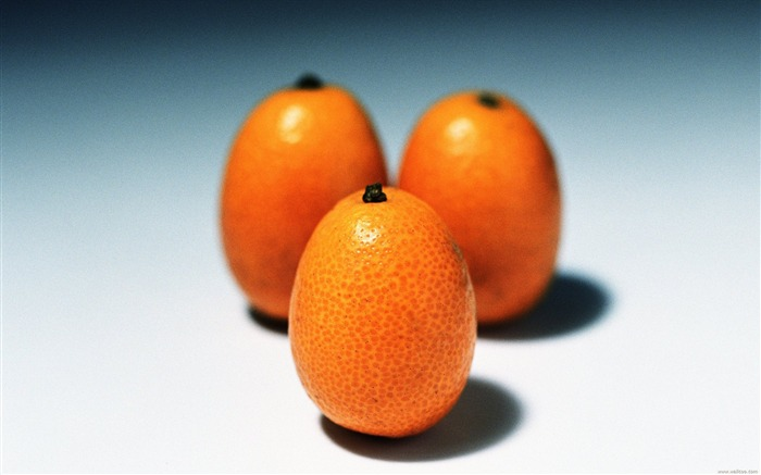 Fruit Photography kumquat Wallpaper Views:8273 Date:6/22/2011 10:48:05 PM