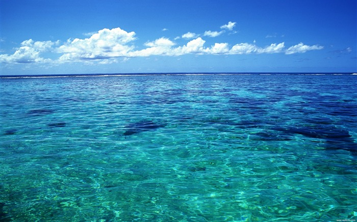 Tahiti crystal clear sea water wallpaper Views:134454