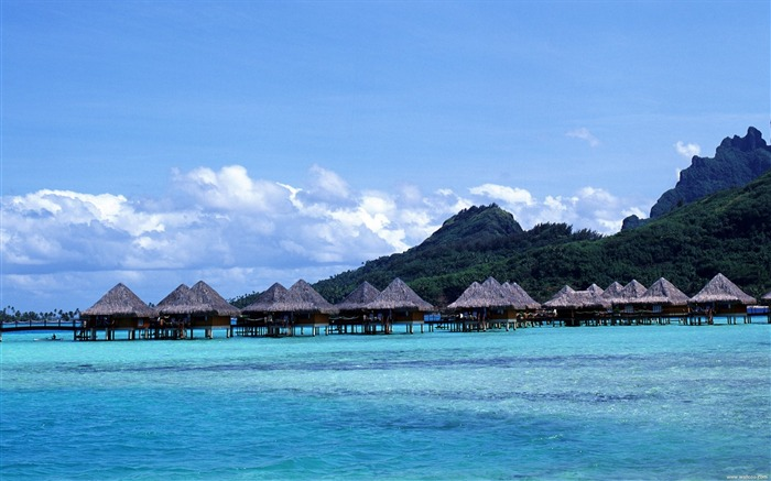 Tahitian hut wallpaper water Views:9598