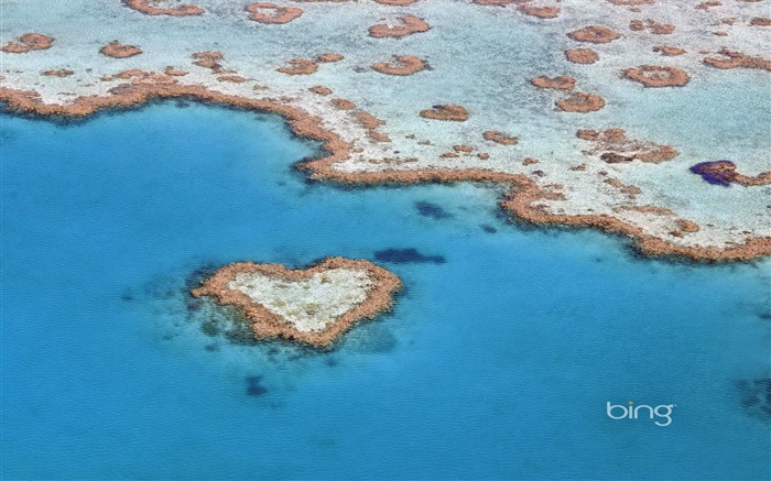 The heart of the Great Barrier Reef Queensland heart-shaped reef wallpaper Views:16802 Date:6/20/2011 11:27:26 PM
