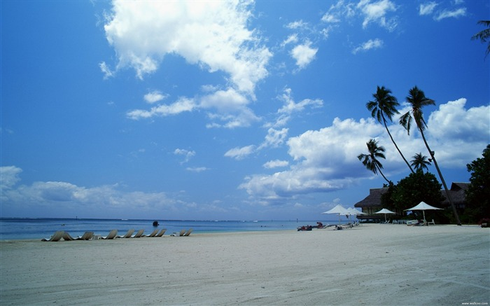 dazzling white sand beach wallpapers Views:12794