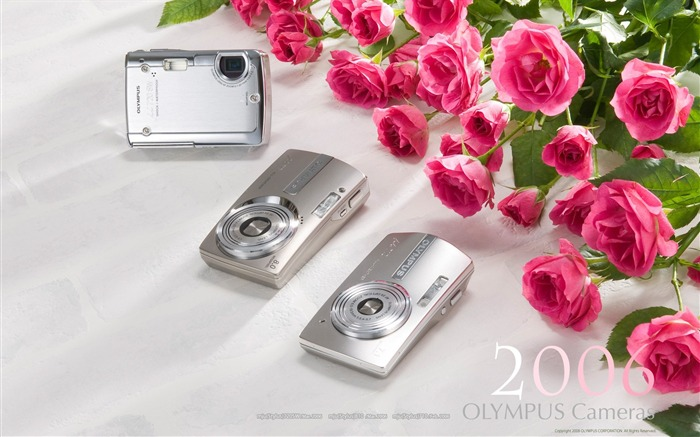 2006 Oplympus Style Digital Cameras Views:5450