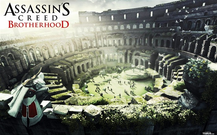 Assassin Creed Brotherhood Wallpaper Views:17055