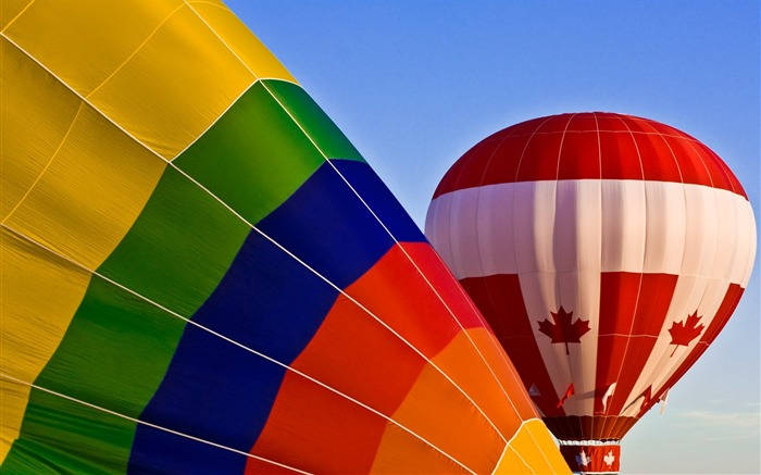 Colorful hot air balloons during inflation 01 Views:3974