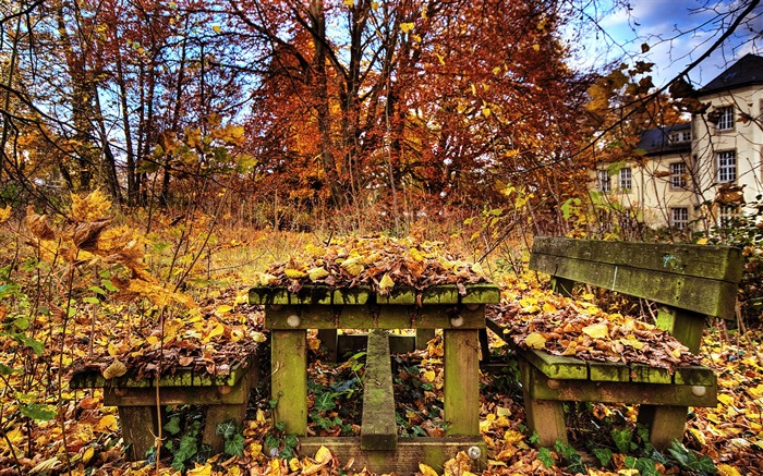 Decay in autumn - The Beauty Of Urban Decay Views:8246