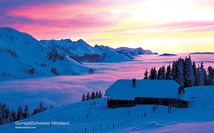 Switzerland Winter Fun - Swiss Alps Ski Vacation Views:29232