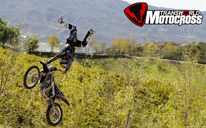 FMX motocross stunt fancy wallpaper 24 Views:3631