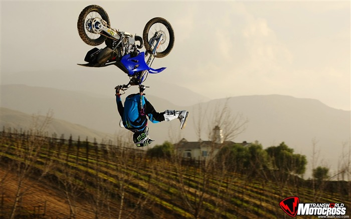 FMX motocross stunt fancy wallpaper 46 Views:6723